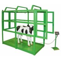 Весы для взвешивания животных особенности весы для скота