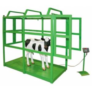 Платформенные весы для взвешивания скота ВПС